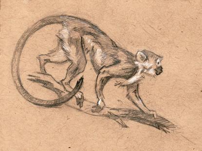 bronzemonkey.jpg